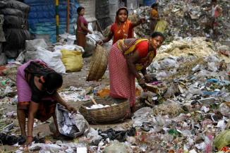 india-environment-day-2011-6-4-5-50-13