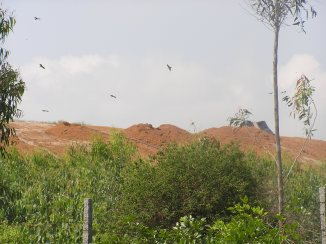 Landfill covered with a layer of soil. The leachate from these mounds enters an open tank located at the entrance of the facility.