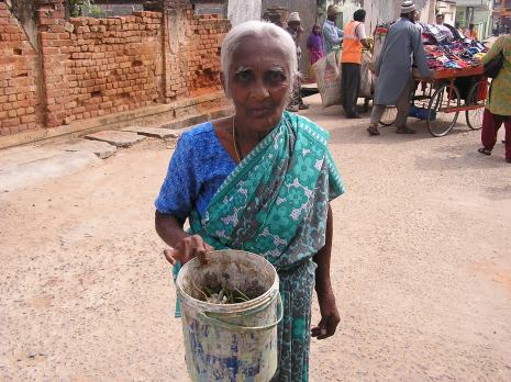 Shahzadi is nearing 75. She hears it right when the whistle blows and walks out to give her segregated kitchen waste.