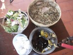 Collect all the organic waste from your kitchen and mix it with an equal quantity of dry leaves.