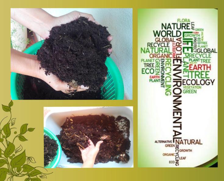 blog-compost