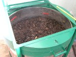 In 12 days, the composting mass has reduced by half in quantity.
