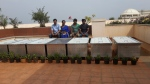 Composting Bins and our Proud Staff